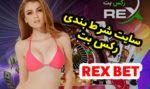 سایت رکس بت REX BET آدرس جدید سایت بازی انفجار با درآمد میلیونی