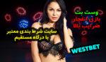 سایت وست بت West Bet بهترین کازینو آنلاین برای درآمد میلیونی